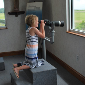 young visitor looking through a spotting scope at the Visitor Center
