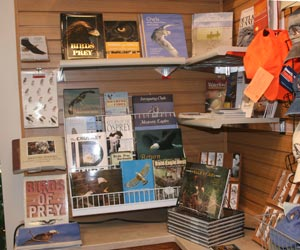 eagle and osprey books at the Eagle's Nest Book and Gift Shop